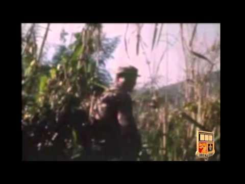 Mike Force - Australian Army Training Team - Montagnard Strike Force