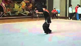 Shang Style Xing Yi Quan - Chicken Style Form - China Competition 2010
