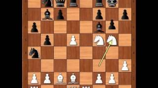 Gligorićev šahovski šou dva Skakača - GLIGORIC vs BIDEV - Spanska partija # 732