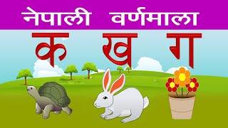 क बाट  कछुवा , Nepali Barnamala || नेपाली वर्णमाला | Learning Nepali Alphabets