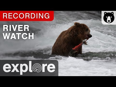 River Watch Katmai National Park Alaska powered by EXPLORE