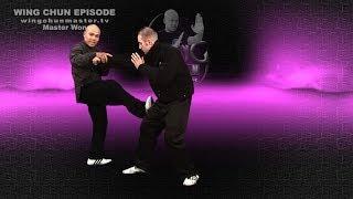 Wing Chun wing chun kung fu Basic Chum Kiu - Episode 6