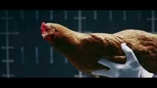 Mercedes Benz MAGIC BODY CONTROL commercial Chicken HD