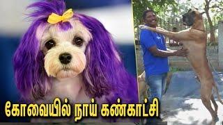 கோவை நாய் கண்காட்சி : Dog Show in Coimbatore | Tamil Nadu Pets, Tourism