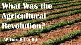 What Was the Agricultural Revolution? AP Euro Bit by Bit #23