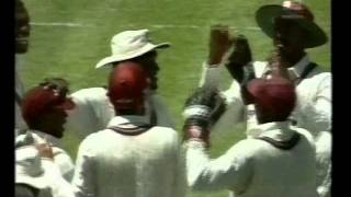 1996/97 Australia vs West Indies TEST SERIES HIGHLIGHTS