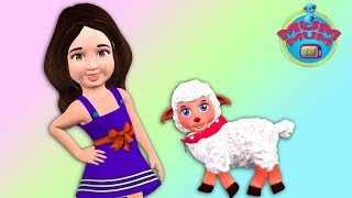Mary Had a Little Lamb, kids songs, children songs , Kids Music, song for kids