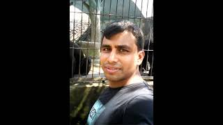 Shapnopuri Zoo Dinazpur    child learning and entertainment point
