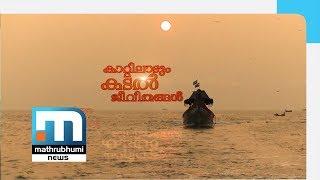 Ockhi Balancesheet: Lives Swaying Along With The Wind| Special Programme| Mathrubhumi News