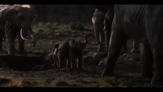 Mowgli saves the baby elephant scene, from The Jungle Book (2016)