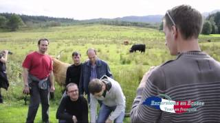 Tour Glasgow, Loch Lomond, loch Katrine and Doune Castle