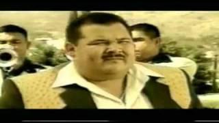 **ARBOLES DE LA BARRANCA**   **EL COYOTE Y SU BANDA**