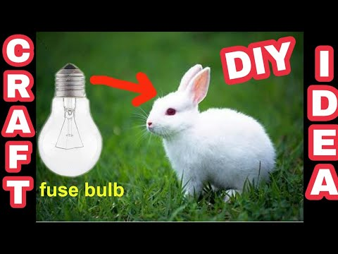 Xxx Mp4 How To Make Rabbit With Cotton Using Bulb At Home In Hindi Gk Craft 3gp Sex
