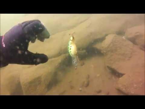 Treasure Hunting Lake Alpine California