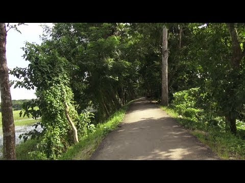 Xxx Mp4 A Trip To Barisal Bangladesh 3gp Sex