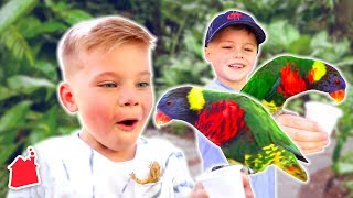 Sneaking Wild Animals Out of the Zoo! w/ MORE Special Guests!