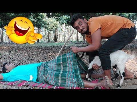Must Watch New Funny Comedy | Bangla Comedy Video Full HD | New Bangla Prank | Part #23 | FunnY Tv