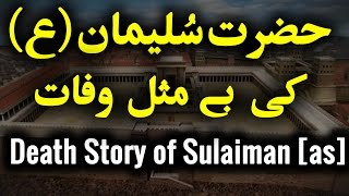 Hazrat Sulaiman [AS] Ki Wafaat | Death Story of Kingdom Solomon [as] [Urdu]