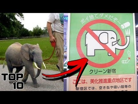 Top 10 Insane Laws In Japan