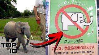 Top 10 Insane Laws In Japan