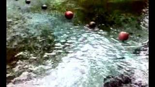 Enchanted River2.mp4