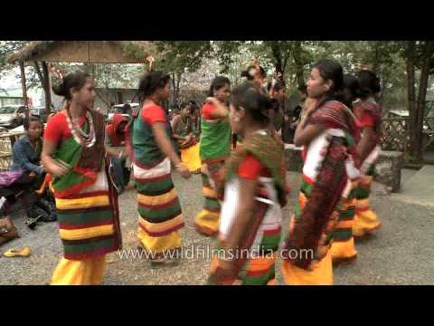 Xxx Mp4 Dimasa Kachari Women Dancers 3gp Sex