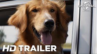 Quatro Vidas de Um Cachorro - Trailer 1