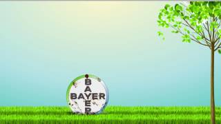 Logo Animation (Bayer)