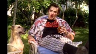 Ace Ventura Pet Detective: What do you feed your Dog? - He's miserable