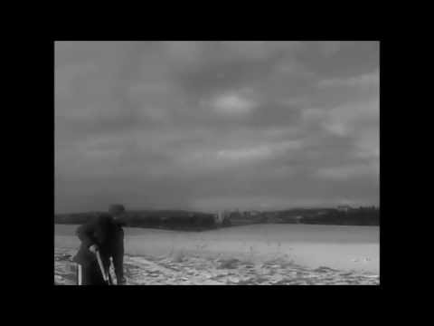 shooting at a moving target (air rifle)