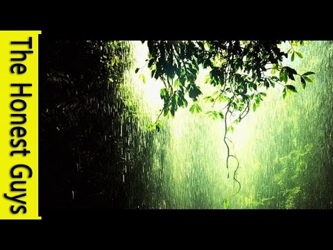 Relaxation Music 1 Hour Gentle Rain Meditation