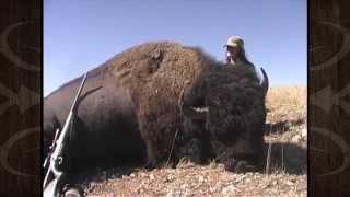 Rifle Buffalo Hunt in Montana - Caryn Moss - MossBack