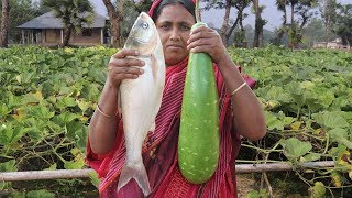 How To Cook Bottle Gourd Recipe in Village Style Farm Fresh Bottle Gourd and Silver Carp Curry