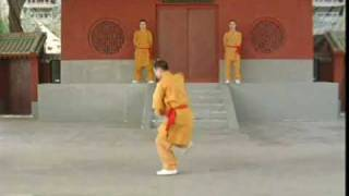 Shaolin Tongbi Quan from Liu Zhenhai vcds - sections 1, 2, & 3