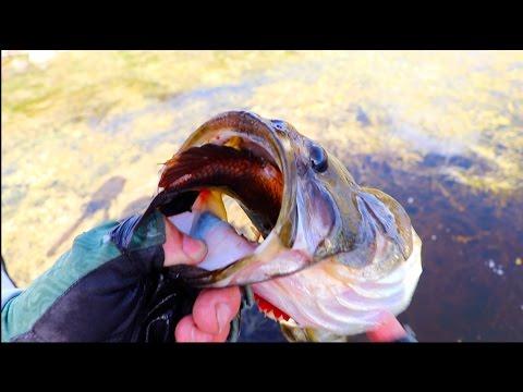 Top 11 Craziest Fishing Moments Jiggin With Jordan