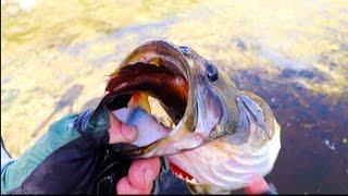 Top 11 Craziest Fishing Moments!!