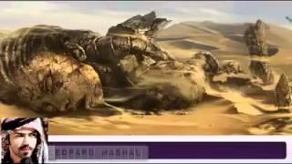 Islami video