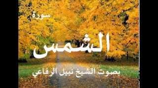 سورة الشمس بصوت الشيخ / نبيل الرفاعي 91