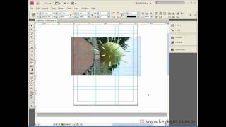 Wstęp do InDesign (II) 3/11 - Operacje na liniach pomocniczych 1 [tutorial]