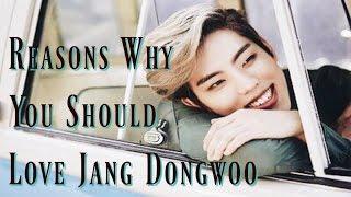 Reasons Why You Should Love Jang Dongwoo