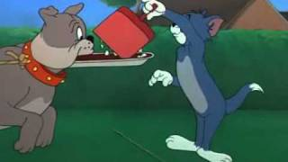 Tom and Jerry - cane riconoscente.avi