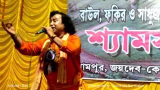 দেখি এই সংসার মাঝে ||  বিজয় সরকারের গান || Sribash Das.