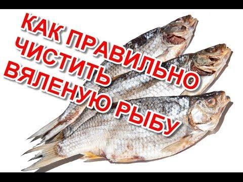 Как правильно в домашних условиях завялить рыбу