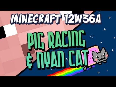 Pig Racing & Nyan Cat Snapshot 12w36a Part 2