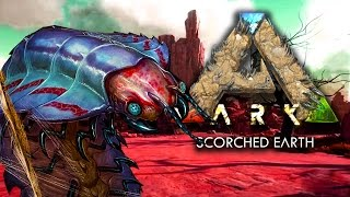 GIANT KILLER BUGS - ARK: SCORCHED EARTH SURVIVAL (DLC)(EP.5)