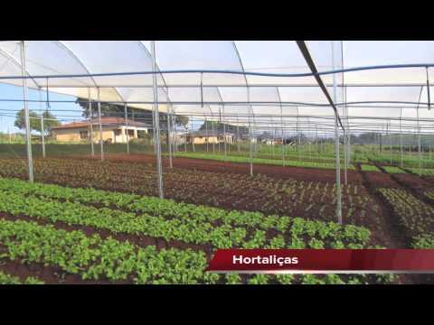 Plantfort estufas agricolas