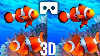 VR Videos 3D Aquarium Relaxation 3D VR 4K [Google Cardboard VR Box 3D 360 VR Headset]