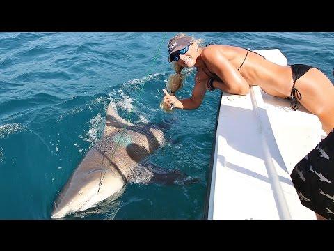 Florida Offshore Fishing Girl Lands 500lb+ Monster Shark!