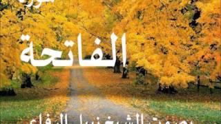 القرآن الكريم بصوت نبيل الرفاعي