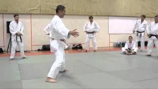 Katanishi Uchi Mata 1